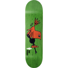Girl - Pacheco Vinyl Deck-8.37 - Skateboard Deck