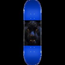 Mini Logo - Deck 243/k-20 -8.25 Animal Panther Eyes Navy - Skateboard Deck