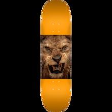 Mini Logo - Deck 191/k16 Mini-7.5 Animal Lion Eyes Orange - Skateboard Deck