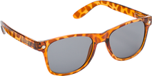 Glassy Sunhaters - Leonard Tortoise Brn / Brn Sunglasses