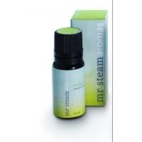 Mr. Steam 103810 AromaSteam Eucalyptus Essential Oil, Bottle with Integral Dropper 10ml