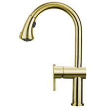 Whitehaus WHS1971-SK-B Waterhaus Kitchen Faucet with Gooseneck Swivel Spout, Pull Down Spray Head,  Lever Handle - Brass