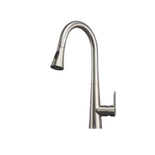 Lexora Furio Brass Kitchen Faucet w/ Pull Out Sprayer - Brushed Nickel