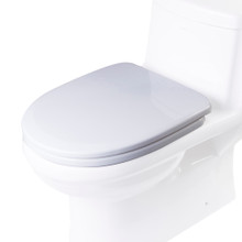 EAGO R-222SEAT Replacement Soft Closing Toilet Seat for TB222