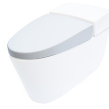 EAGO R-340SEAT Replacement Soft Closing Toilet Seat for TB340