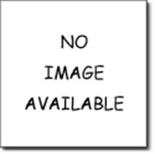 Danze A511403NP Roman Tub Handheld Shower Hose - Brushed Nickel