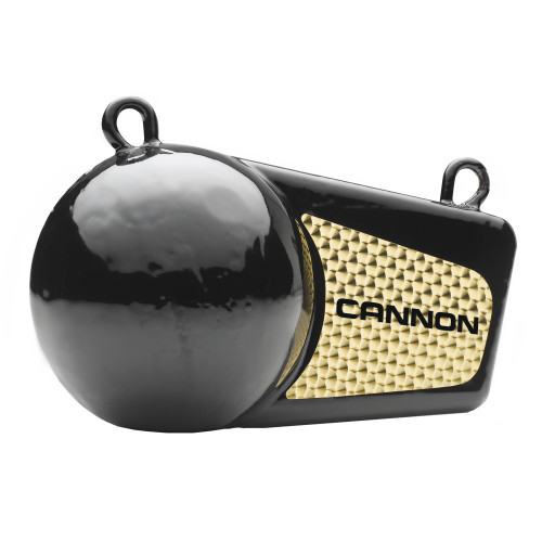 Cannon 10lb Flash Weight