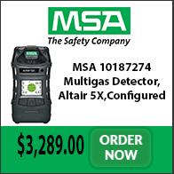 msa-10187274