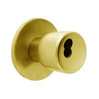 X411BD-EY-605 Falcon X Series Cylindrical Asylum Lock with Elite-York Knob Style in Bright Brass Finish