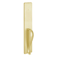 1702B-605 PHI Dummy Trim with B Design Pull for Exit Only Apex and Olympian Series Exit Device in Bright Brass Finish