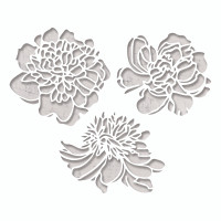 Sizzix Thinlits Die Set 3PK - Cutout Blossoms by Tim Holtz 664161