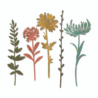 PRE-ORDER ONLY Sizzix Thinlits Die Set 5PK - Wildflower Stems #1 by Tim Holtz 664163