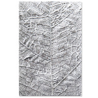 New! Sizzix 3-D Textured Impressions Embossing Folder - Leaf Veins 664488