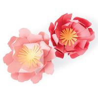 New! Sizzix Bigz Die - Summer Blooms 663860