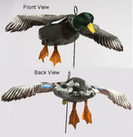 Deadly Decoy Flyer Drake Mallard.