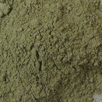 Rublev Colours Dry Pigments 100g - S2 Antica Green Earth