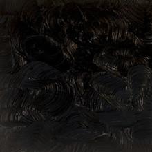 Gamblin Artist's Oil Colors Chromatic Black AG 37ml
