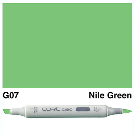 Copic Ciao Markers G07 - Nile Green