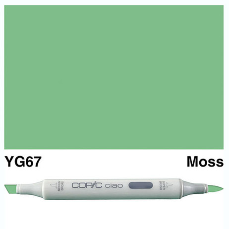 Copic Ciao Markers YG67 - Moss