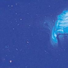 Matisse Fluid Acrylics - Cobalt Blue S2