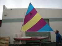 Dolphin Senior Colored Sail