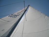Catalina 22 Cruising 155% Genoa