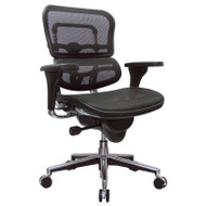 Eurotech by Raynor Ergohuman Mesh Mid-Back Chair - CAME8ERGLO
