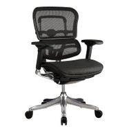Eurotech by Raynor Ergo Elite Mesh Mid-Back Chair - ME5ERGLTLOW-N15