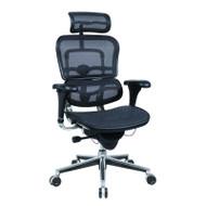Raynor Ergohuman Mesh Chair - ME7ERG