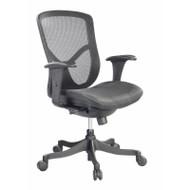 Raynor Fuzion Basic Low Back Mesh Chair - FUZ5B-LO