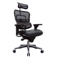 Eurotech by Raynor Ergohuman Mesh High-Back Chair with Leather Seat - LEM4ERG