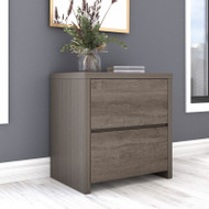 Bush Furniture Bristol 2-Drawer Lateral File Cabinet Restored Gray - BRF129RT-03