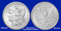 1921-D Morgan Silver Dollar - Collector's Circulated Condition