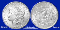 1892-P Morgan Silver Dollar - Collector's Circulated Condition