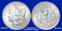1893-P Morgan Silver Dollar - Collector's Circulated Condition