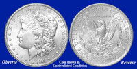 1902-P Morgan Silver Dollar - Collector's Circulated Condition