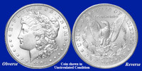 1904-P Morgan Silver Dollar - Collector's Circulated Condition