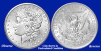 1921-P Morgan Silver Dollar - Collector's Circulated Condition