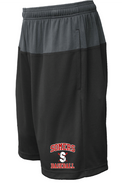 SLL Baseball Pennant Duel Pocketed Shorts Adult and Youth