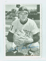 1969 Topps Deckles 10 Bill Freehan Detroit Tigers Very Good to Excellent