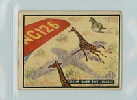 1950 Bring Em Back 12 Fight Over The Jungle Good to Very Good