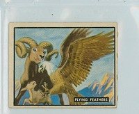 1950 Bring Em Back 22 Flying Feathers Excellent