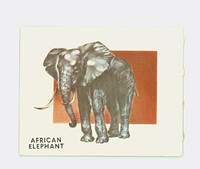 1951 Animals of the World 170 African Elephant Excellent Grey Back