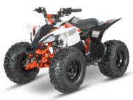 Stomp Raging Bull 110 ATV
