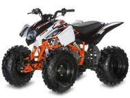 Kayo Raging Bull 150 ATV