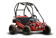 Hammerhead Torpedo Kids Off Road Buggy