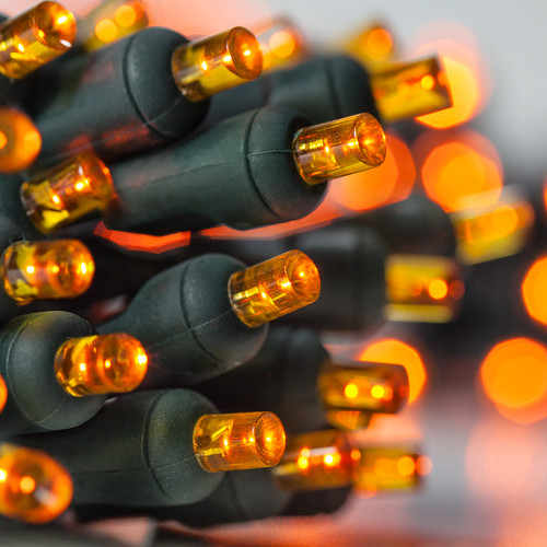 Battery Operated Orange Halloween Lights