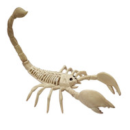 Creepy Halloween Skeleton Scorpion