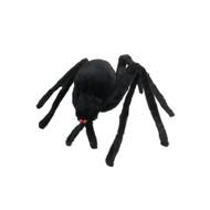 Large Black Hairy Spider