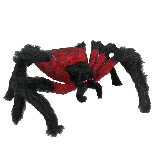 Red And Black Hairy Spider